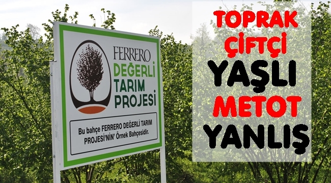 Türkiye fındıkta üretimde dünya lideri verimlilikte 6. sırada