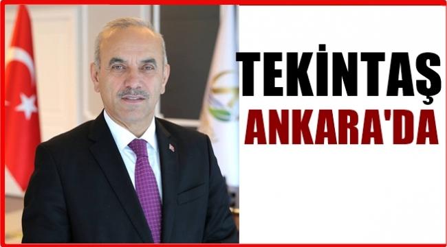 AK Parti Genel Merkezi Tekintaş'ı Ankara'ya çağırdı