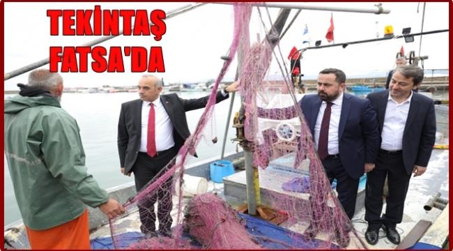 Tekintaş: Elimiz her zaman Fatsa'nın üzerinde