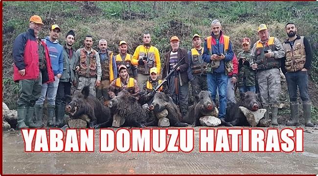 Avcılar yaban domuzu avladı