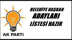 AK Parti'de kimler aday oldu?