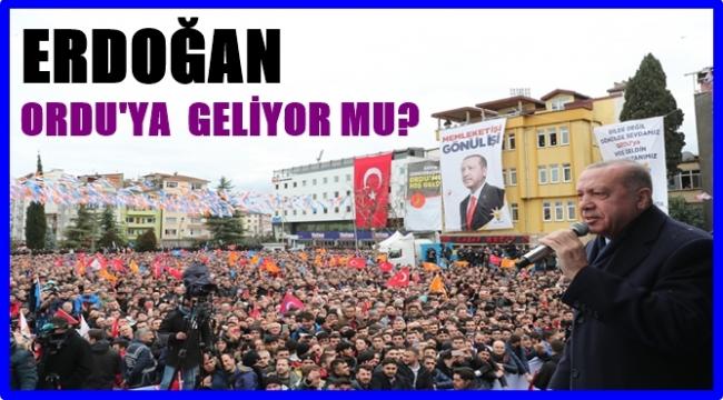 İl Başkanı Tomakin açıkladı: Erdoğan Ordu'ya geliyor mu?