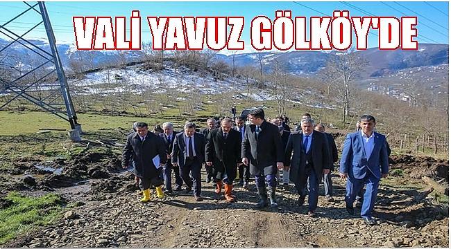 Vali Yavuz Gölköy'de incelemelerde bulundu