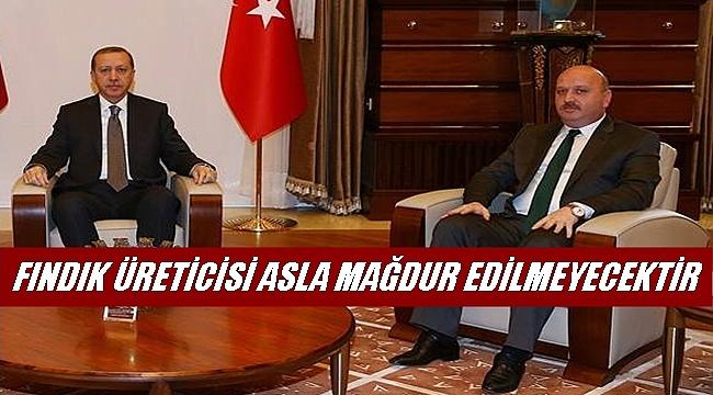 Gündoğdu: Cumhurbaşkanımız Erdoğan'nın fındıkla ilgili talimatı var