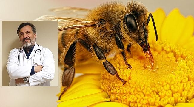 Arı alerjisi öldürüyor