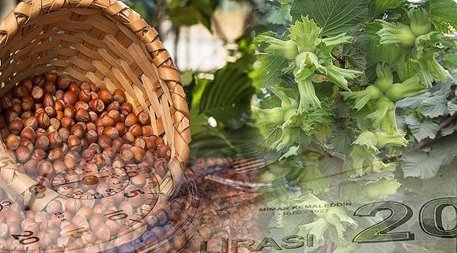 İyi tarım ve organik tarım ödemeleri başladı