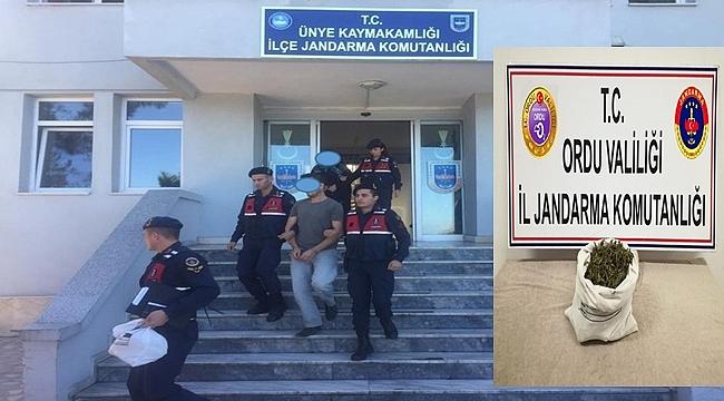 Ordu'da 5 kişi uyuşturucudan gözaltına alındı