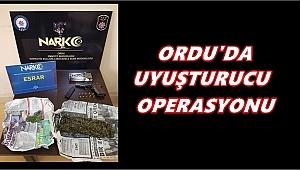 Ordu'da 5 kişi uyuşturucudan tutuklandı