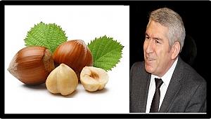 Ekber: Ferrero Türk fındığına muhtaç