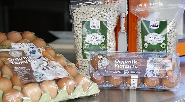 Ordu'da organik yumurta satışı başladı