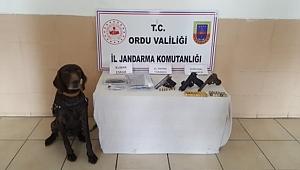 Ordu'da uyuşturucu operasyonu 4 kişi gözaltına alındı
