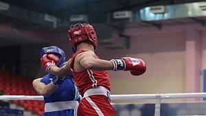 Türkiye Boks Şampiyonası Ordu'da yapılıyor