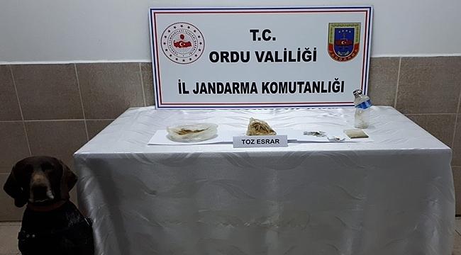 Ordu'da uyuşturucudan 4 kişi gözaltına alındı