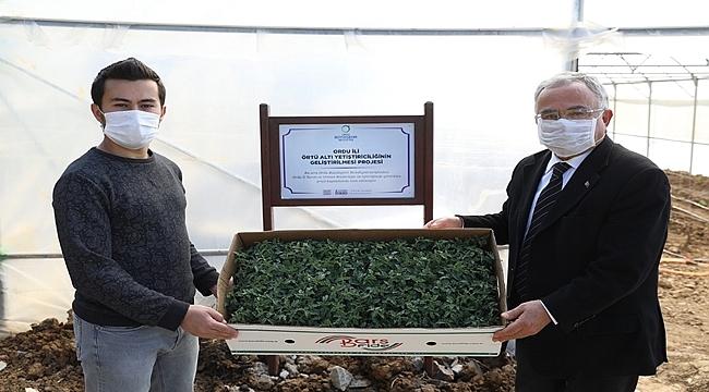 Başkan Güler: Tarımda Ordu Modeli Yaratıyoruz