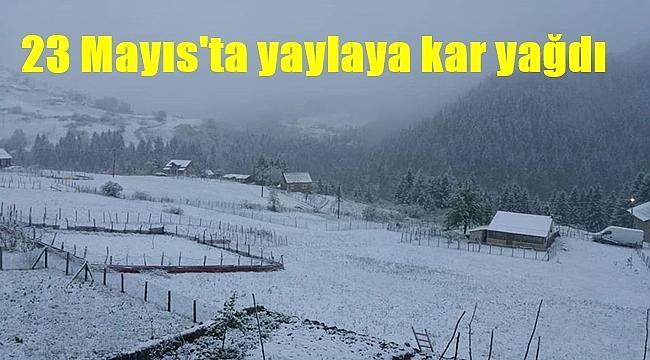 Yaylaya kar yağdı