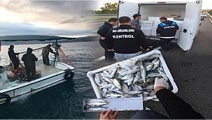 Ordu'da 22 balıkçıya ceza kesildi