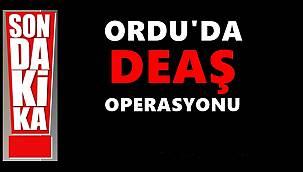 Ordu'da DEAŞ operasyonu: 6 kişi gözaltına alındı