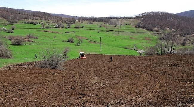 Ordu'da atıl tarım arazileri değerlendiriliyor