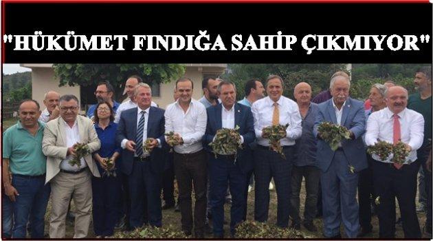 CHP HÜKÜMETE FINDIK HARMANINDAN SESLENDİ
