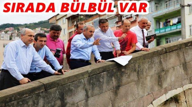 ALTINORDU BÜLBÜL DERESİ'NE GİRDİ