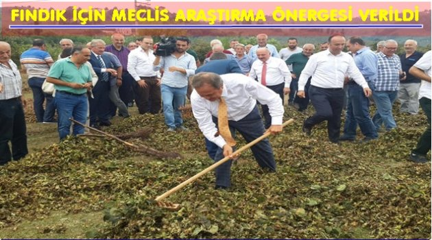 CHP FINDIĞI MECLİS'E GETİRDİ