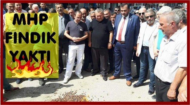 MHP'DEN FINDIK EYLEMİ
