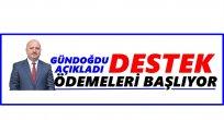 FINDIK ÜRETİCİSİNE 300 MİLYON LİRALIK DESTEK