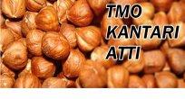 TMO ALIM YAPMASI PİYASAYI ETKİLEMEDİ